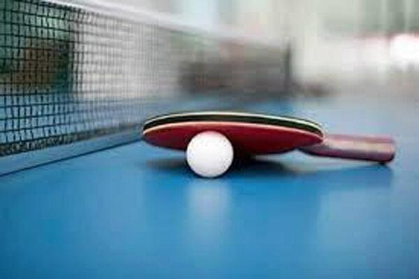 اعضای کمیته مسابقات فدراسیون تنیس روی میز معرفی شدند